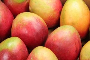 Jeff's Seven Elements Seasons Mango